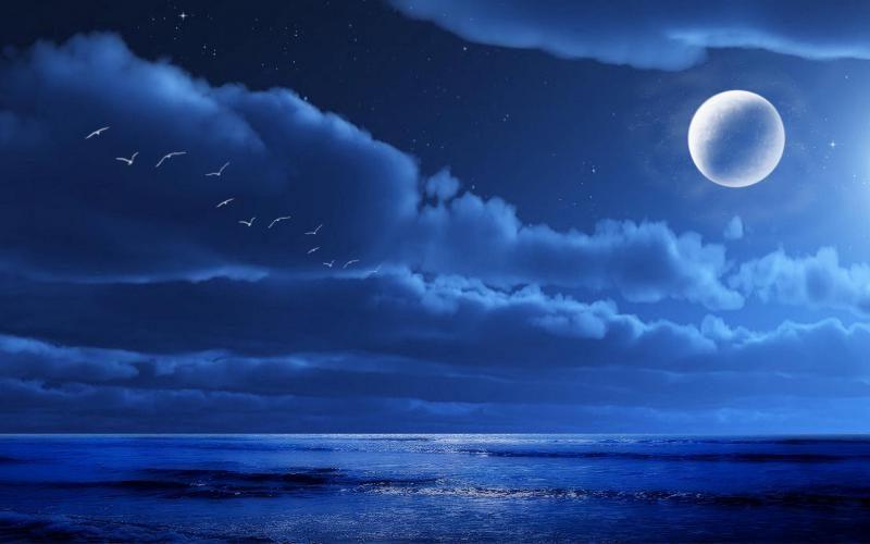 Bölüm 1: Ay Tutulması Hissediş